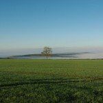 Paysage avec brume matinale